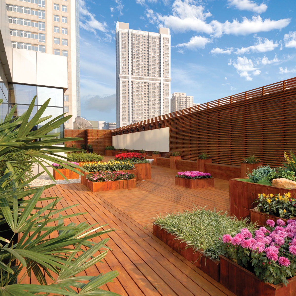 Axis soil amendment solution for rooftop garden